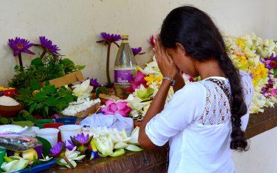 Sri Lanka #1 – De Negombo à Anuradhapura, ville sainte du bouddhisme cinghalais