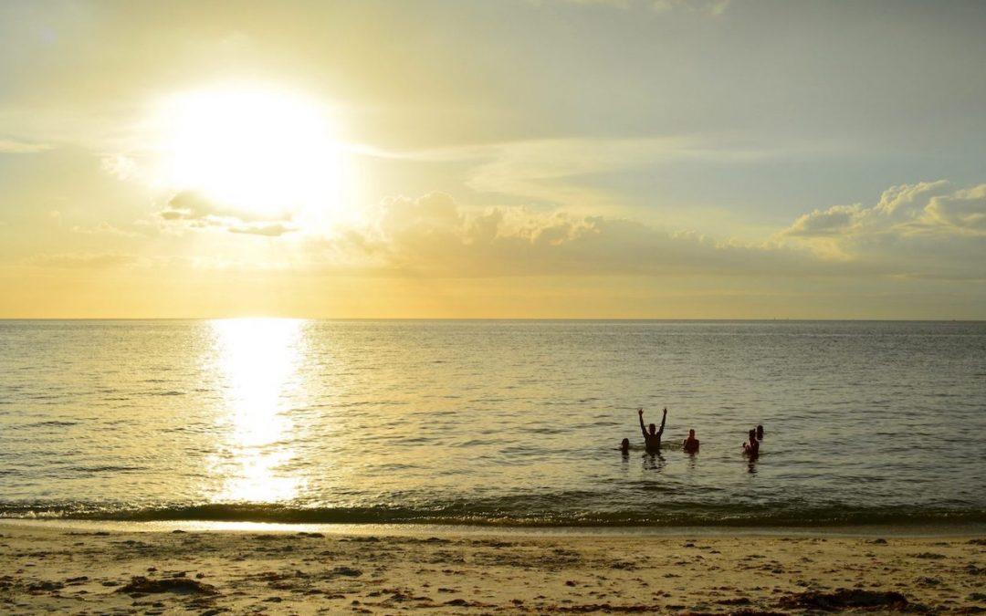 Mission Koh-Lanta sur l'île de Cayo Costa dans le Golfe du Mexique