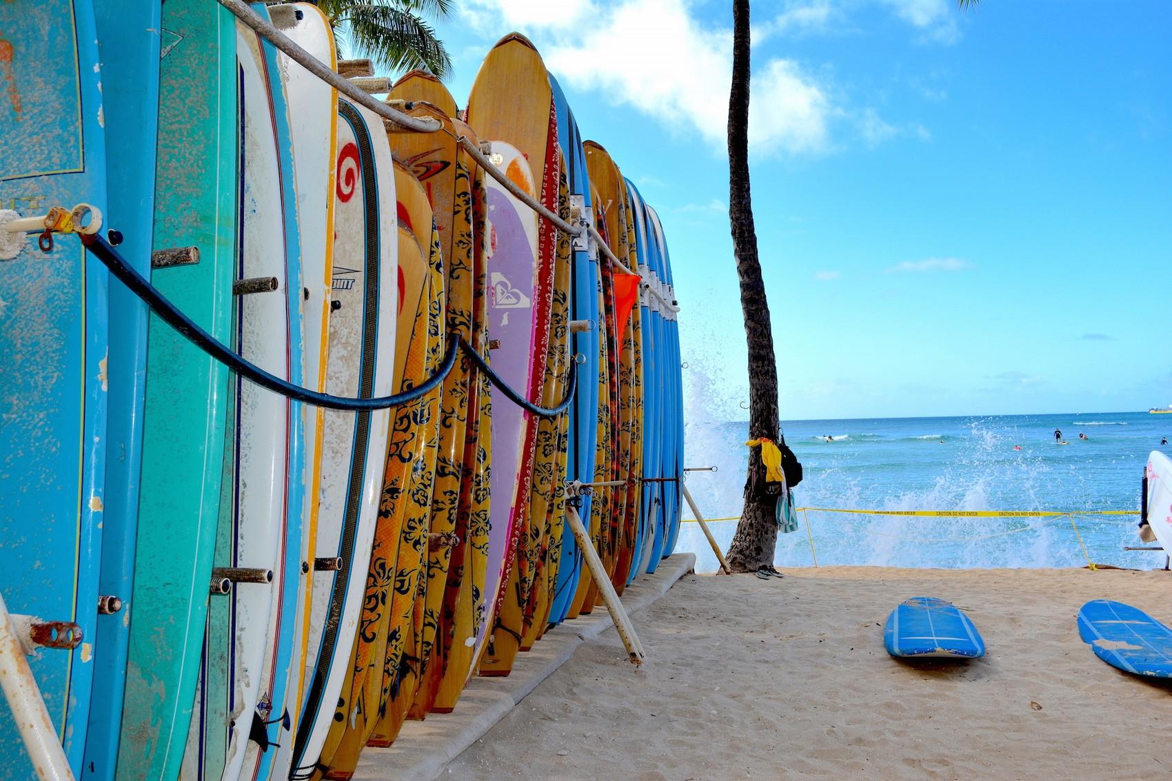 Hawai Diapo (9)