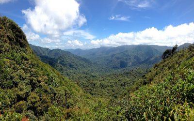 Costa Rica #6 – Dans la forêt de nuages de la Réserve biologique de Monteverde