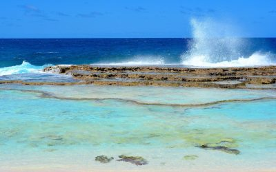 Îles Loyauté #2 – Randonnée vers les terrasses de Shabadran sur l'île de Maré