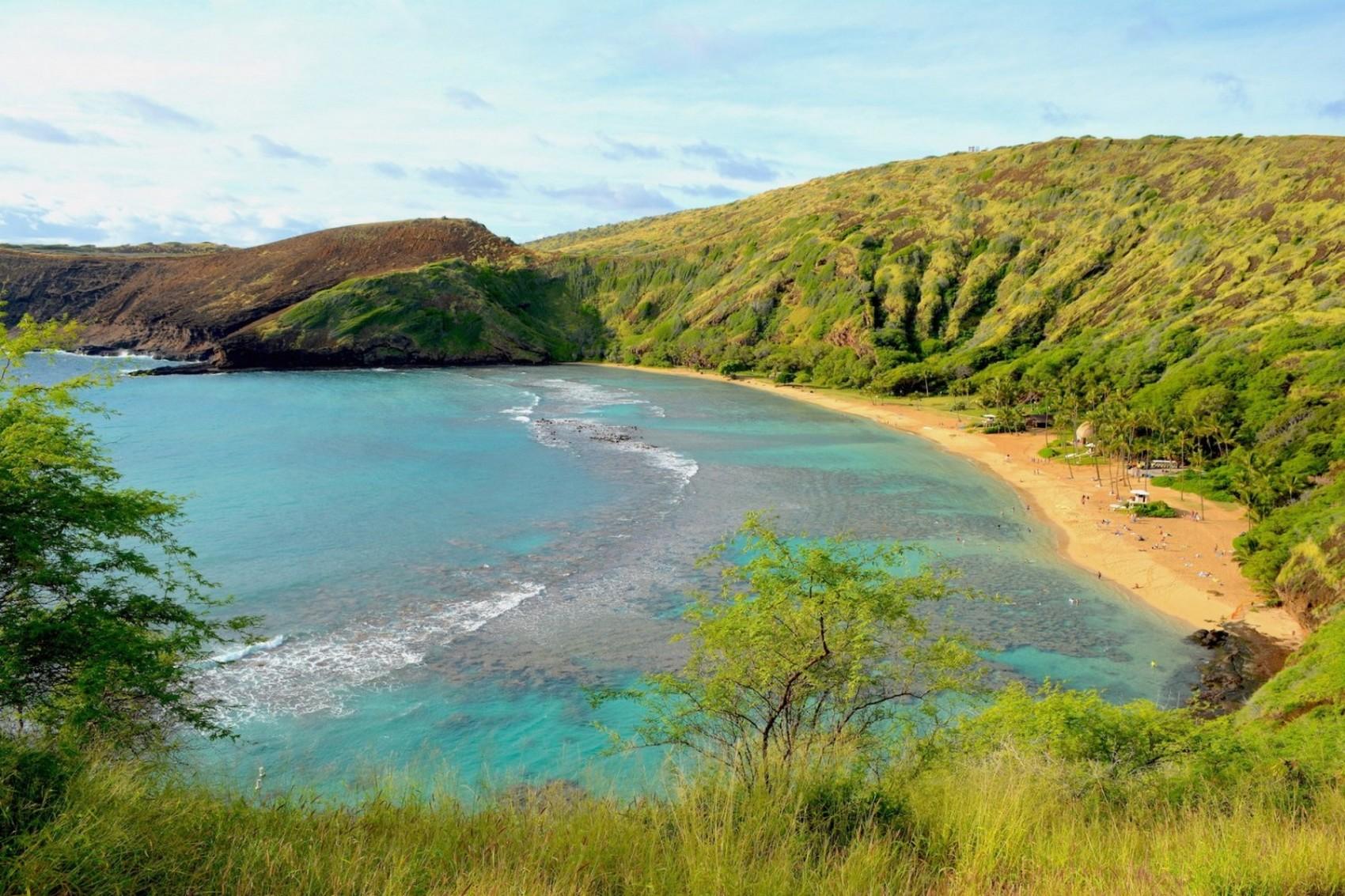 Hawai Diapo (4)
