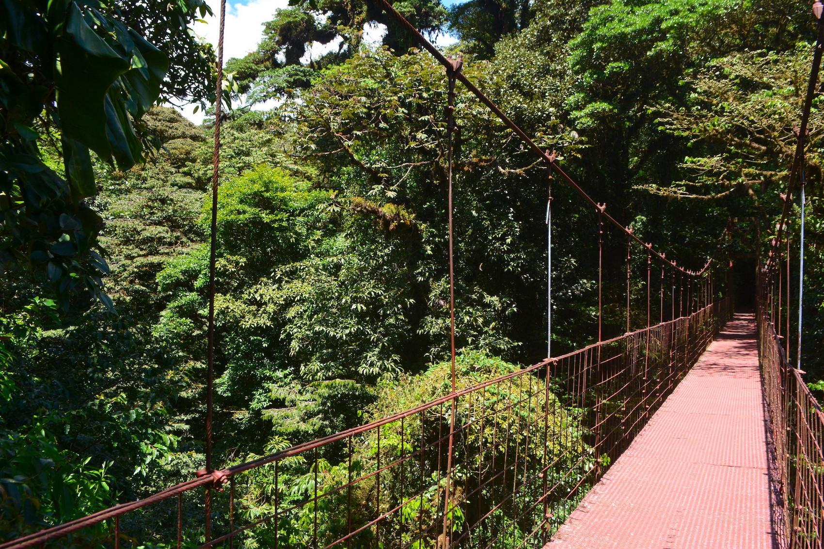 Pont Monteverde (1)